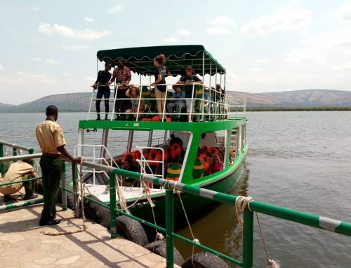The Beauty About Taking A Boat Cruise On Your Uganda Wildlife Safari to Queen National Park – Uganda Safari News